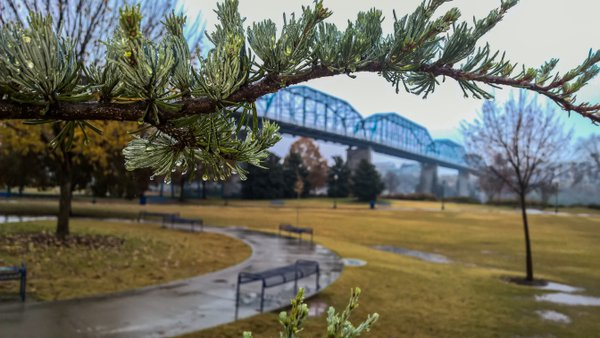 A rainy day at the Coolidge Park near walnut street bridge  thumbnail