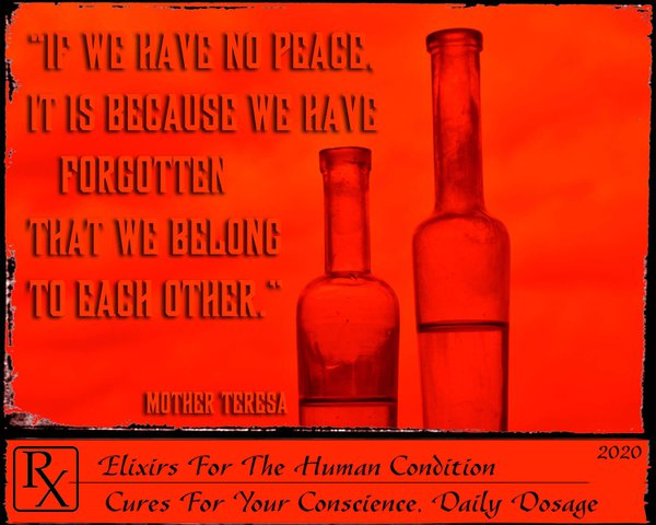 Elixirs For The Human Condition: Cures For Your Conscience thumbnail