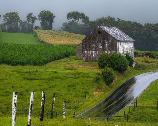Rainy Day Barn thumbnail