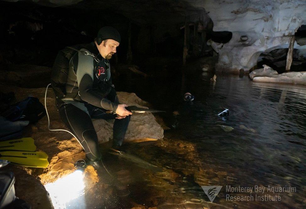 A Diver in a dark, underwater cave.