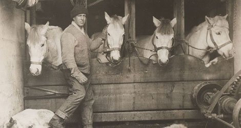"""Captain Lawrence """"Titus"""" Oates with ponies"""