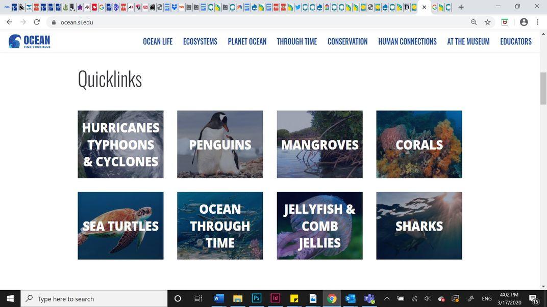 Screenshot of links to various ocean-related topics on the Ocean Portal website.