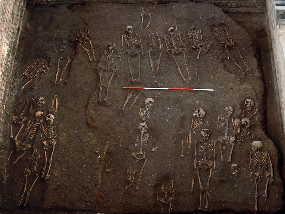 Remains of individuals unearthed at the site of the former Hospital of St. John the Evangelist in Cambridge