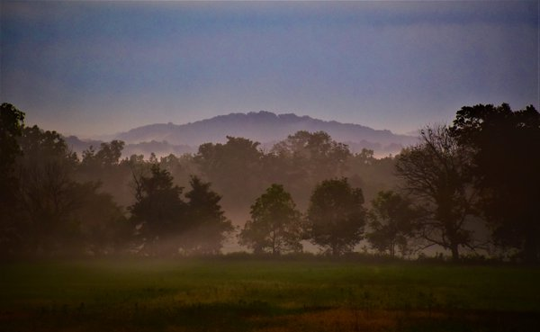 Foggy Morning in the Shenandoah Valley thumbnail