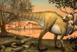 20110520083138protohadros-woodbinesuchus-arlington-300x203.jpg