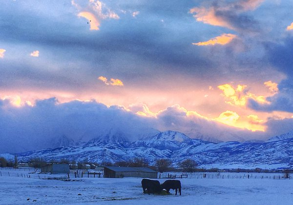 Winter Sunset over a Western Cattle Ranch thumbnail