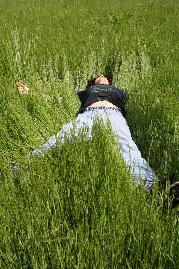 Young man lying in grass thumbnail