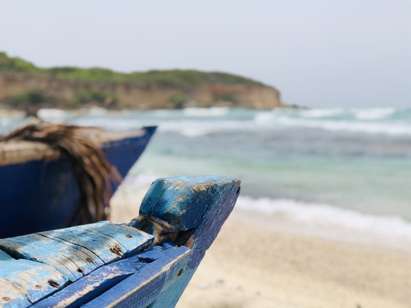 Blue boats with a nature background at the beach thumbnail