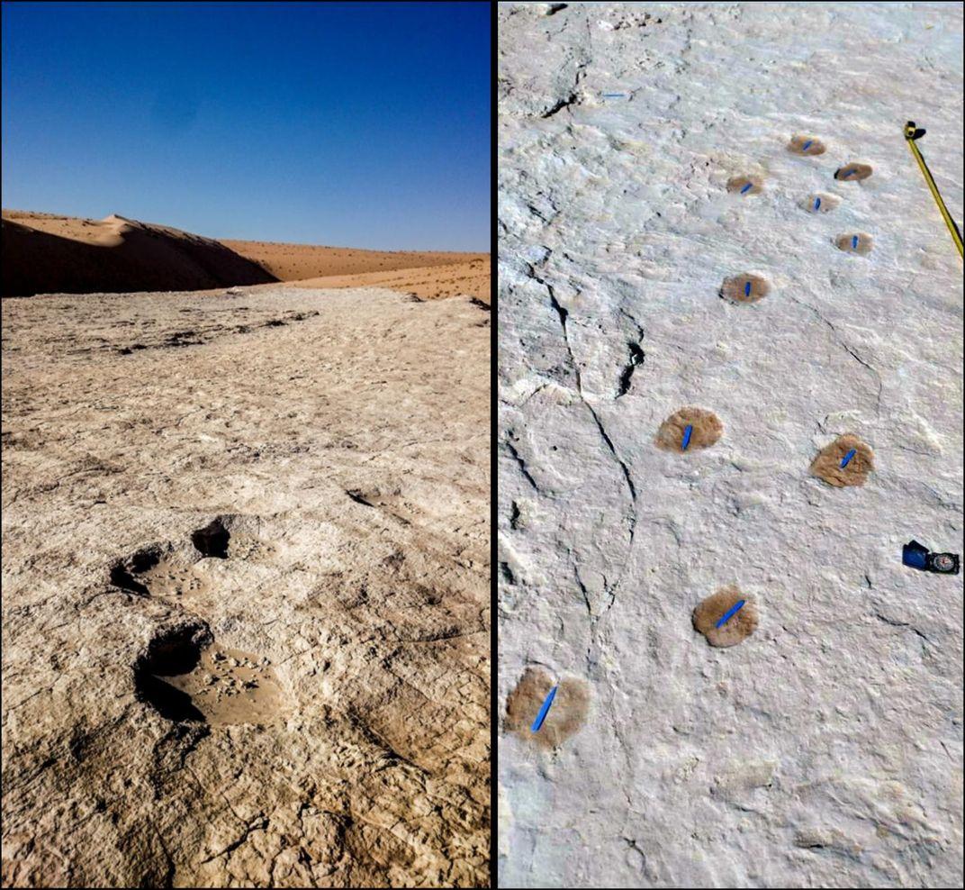 Human Footprints Found in Saudi Arabia May Be 120,000 Years Old