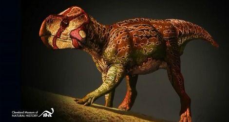 20120319112010unescoceratops-thumb.jpg
