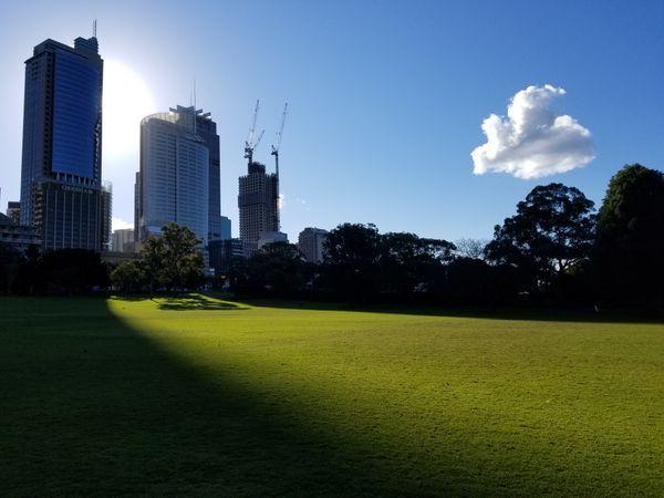 Australia Royal Gardens lawn near Sydney. thumbnail