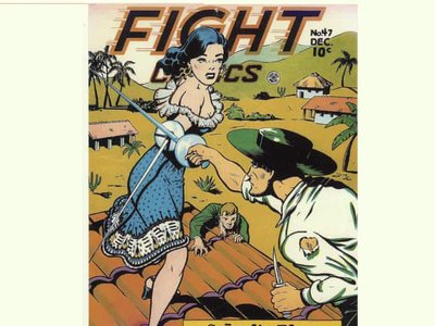 Lily Renée helped develop the Señorita Rio comic strip as one of the early woman creators in the industry.