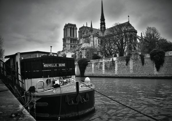 A pleasure boat moored next to Notre Dame cathedral thumbnail