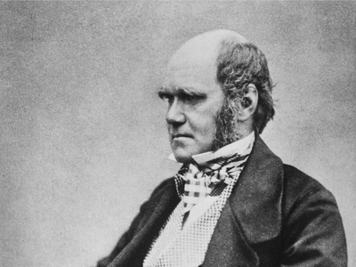 Charles Darwin in 1857, photograph by Maull and Fox