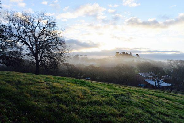 Sonoma Sunrise thumbnail