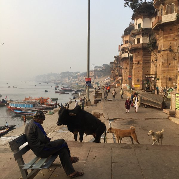 Dawn in Varanasi thumbnail