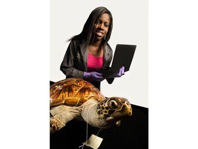 Amanda Lawrence, lead technician, collections program. With a green sea turtle Chelonia mydas