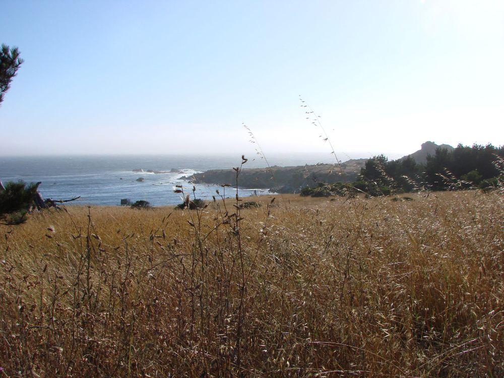 Salt Point, CA