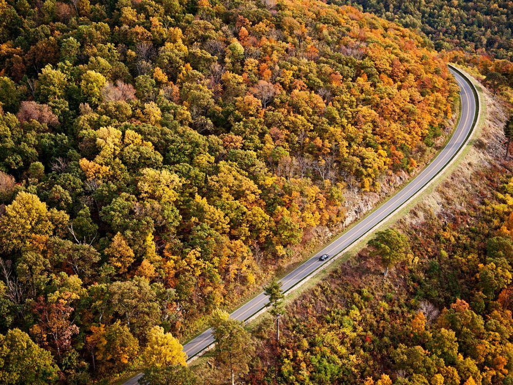 Autumn in the Blue Ridge Mountains, Virginia