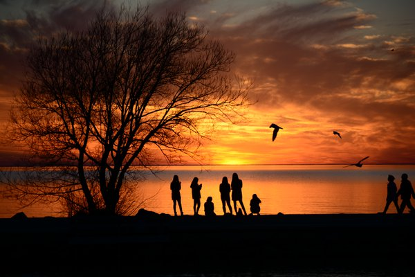 Canadian Sunset Silhouettes. thumbnail