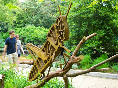 Curious sculptures have popped up throughout the Smithsonian campus in its gardens and are meant to show the inner-workings and relationships of insect and plant habitats.