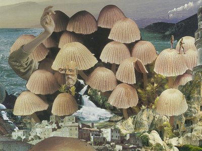 """The headlining image for the upcoming exhibition, """"Mushrooms: The Art, Design and Future of Fungi"""""""