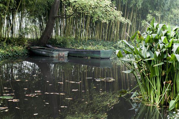 Monet's Dream  thumbnail
