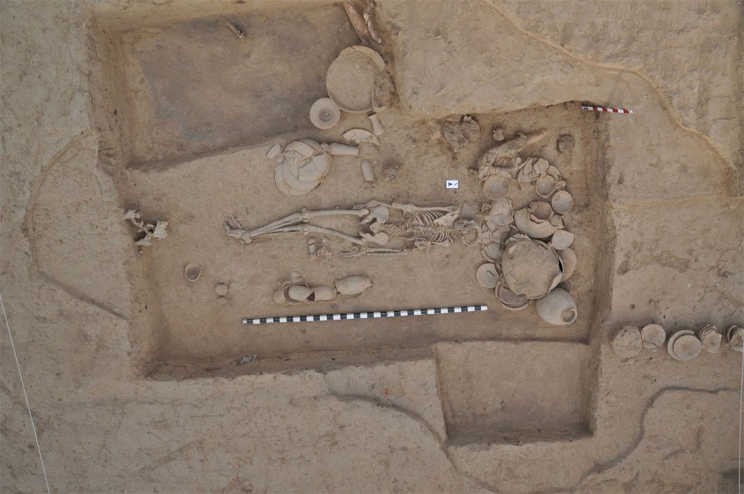 Rare Ancient DNA Provides Window Into a 5,000-Year-Old South Asian Civilization