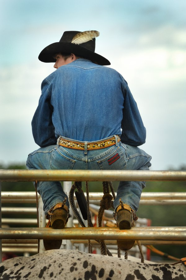 Rodeo cowboy sitting on a pen thumbnail