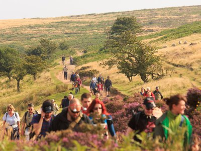 Going the distance: Evolution mavens in the Quantock Hills of England walked for some 3.5 billion years.