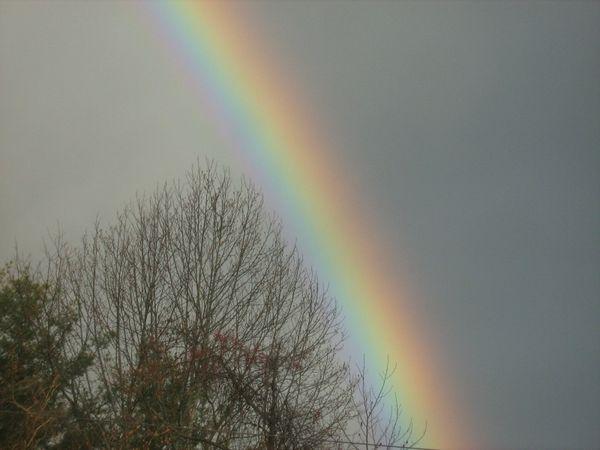 Rainbow dividing the sky thumbnail