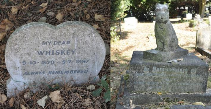 """A split photo: On the left is a heart-shaped tombstone engraved with """"MY DEAR WHISKEY. 9-10-1970 - 5-7-1987. ALWAYS REMEMBERED."""" On the right, a stone statue of a terrier sits upon a tombstone with an illegible engraving."""