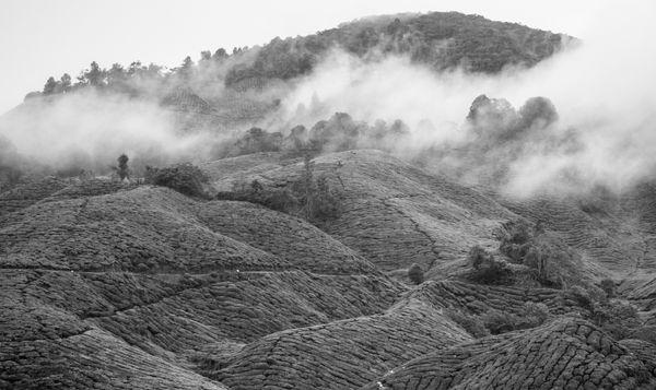 The Misty Mountains thumbnail