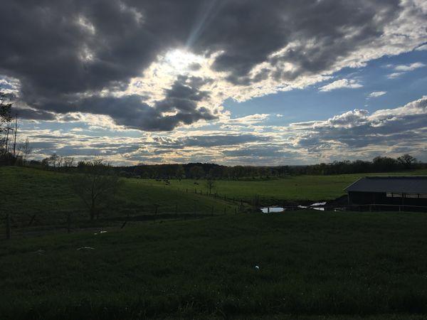 midwestern farmscape thumbnail
