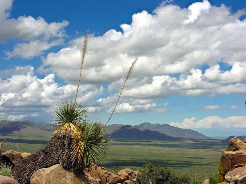 View of the OrganMountains-Desert Peaks National Monument Photo Credit: Lisa-Mandelkern