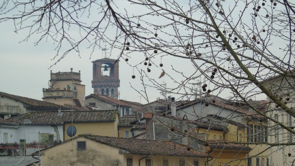 Lucca's s roofs thumbnail