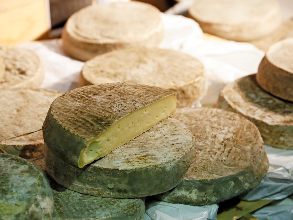 Wheels of Saint-Nectaire cheese