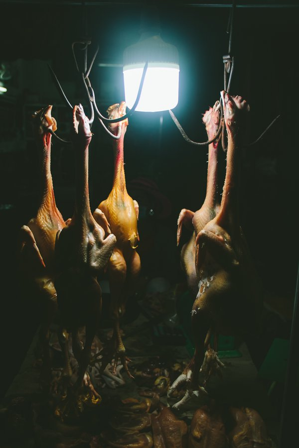 Dead chickens on hooks thumbnail