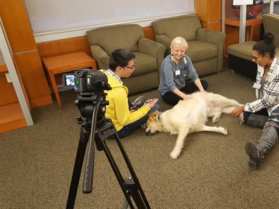 Stress-relief programs that integrate therapy pets can help students relax as they talk and think about their stressors without overwhelming themselves and may be more effective at providing relief than academic approaches to stress management.