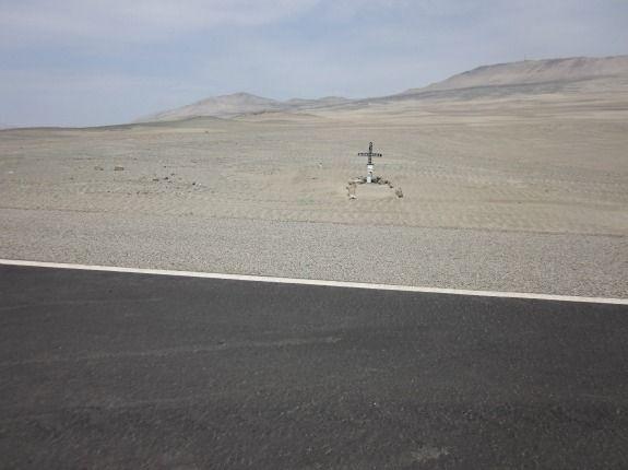 Braving the Pan-American Highway of Death