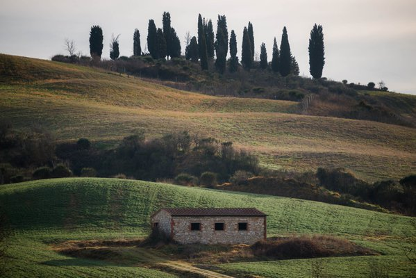 Val D'Orcia, Tuscany thumbnail