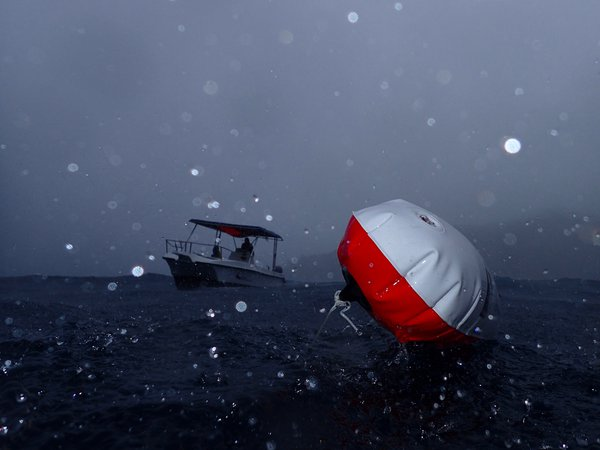 Storms don't stop a dive  thumbnail