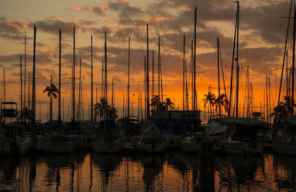 Waikiki Harbour Sunset thumbnail