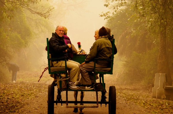 Horse Cart Ride in a foggy morning thumbnail