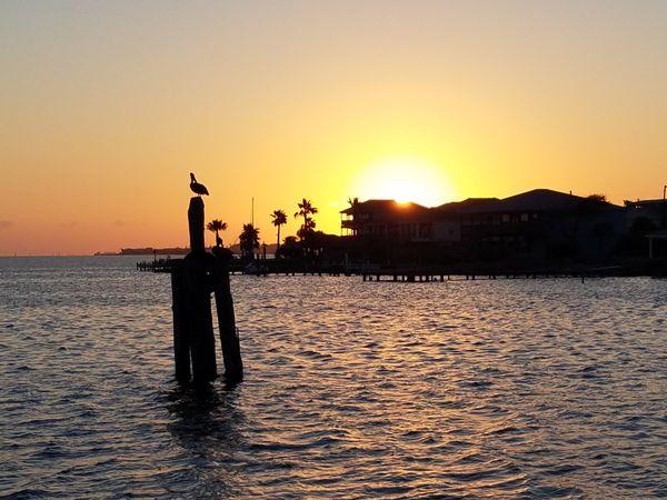 Galveston Glory thumbnail