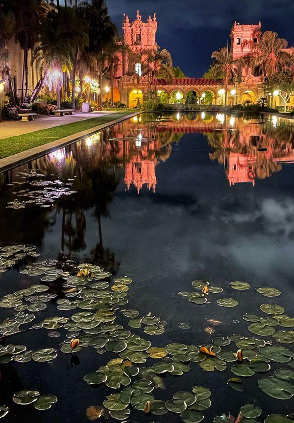 The Lili Pond in Balboa Park thumbnail