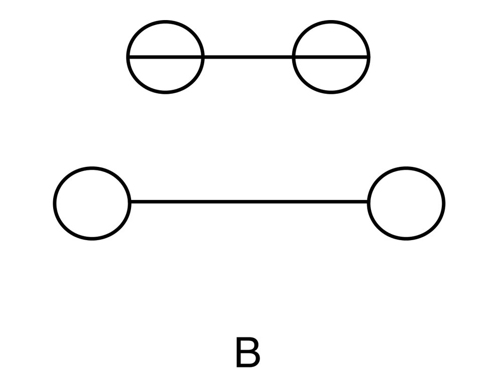 Various iterations of the Müller-Lyer Illusion