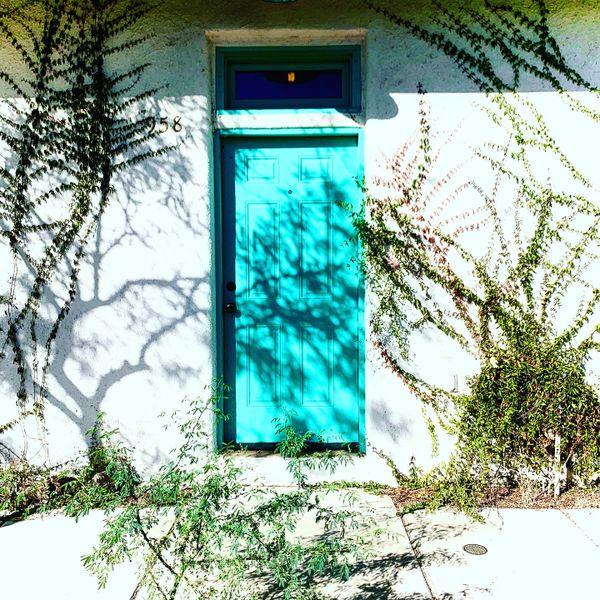 Tucson Barrio Viejo Door thumbnail