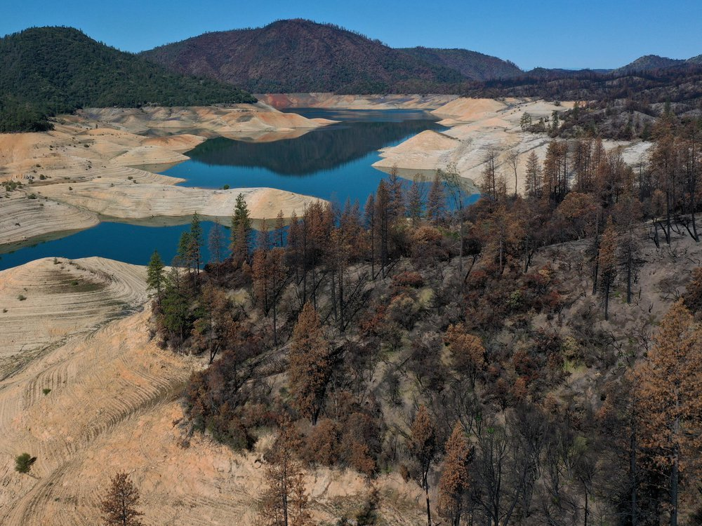 Trees burned by the recent Bear Fire line the steep banks of Lake Oroville where water levels are low on April 27, 2021 in Oroville, California.
