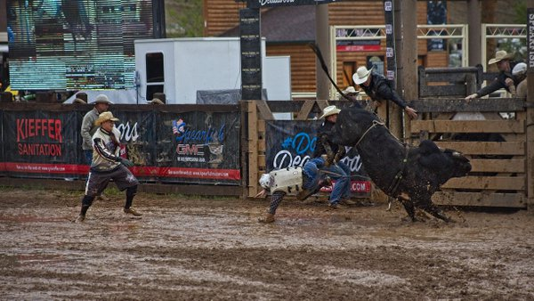 Professional Bull Rider's Rodeo thumbnail
